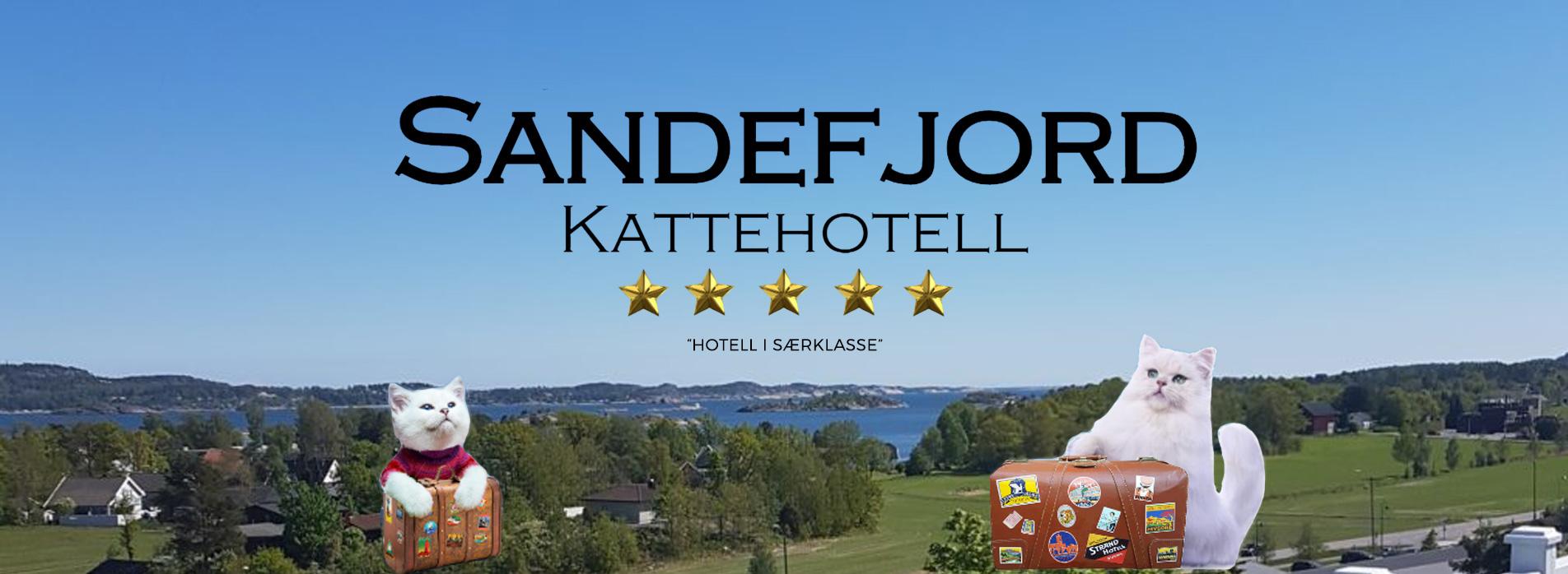 Sandefjord Kattehotell